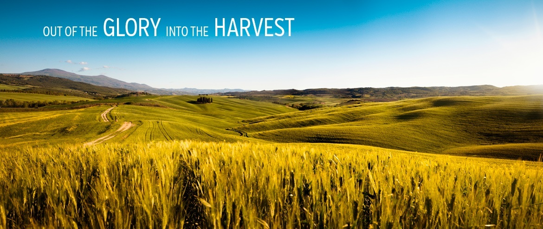 Glory Harvest